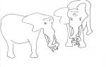 Elephant Art History 1